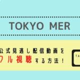 TOKYO MER見逃し配信動画